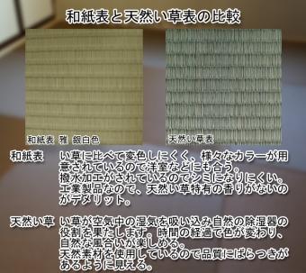 和紙表と天然い草表の比較